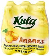 Ananas 250 mL. Doğal Maden Suyu (Vida Kapak)