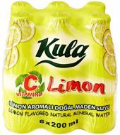Limon C 200 mL. Doğal Maden Suyu (Taç Kapak)
